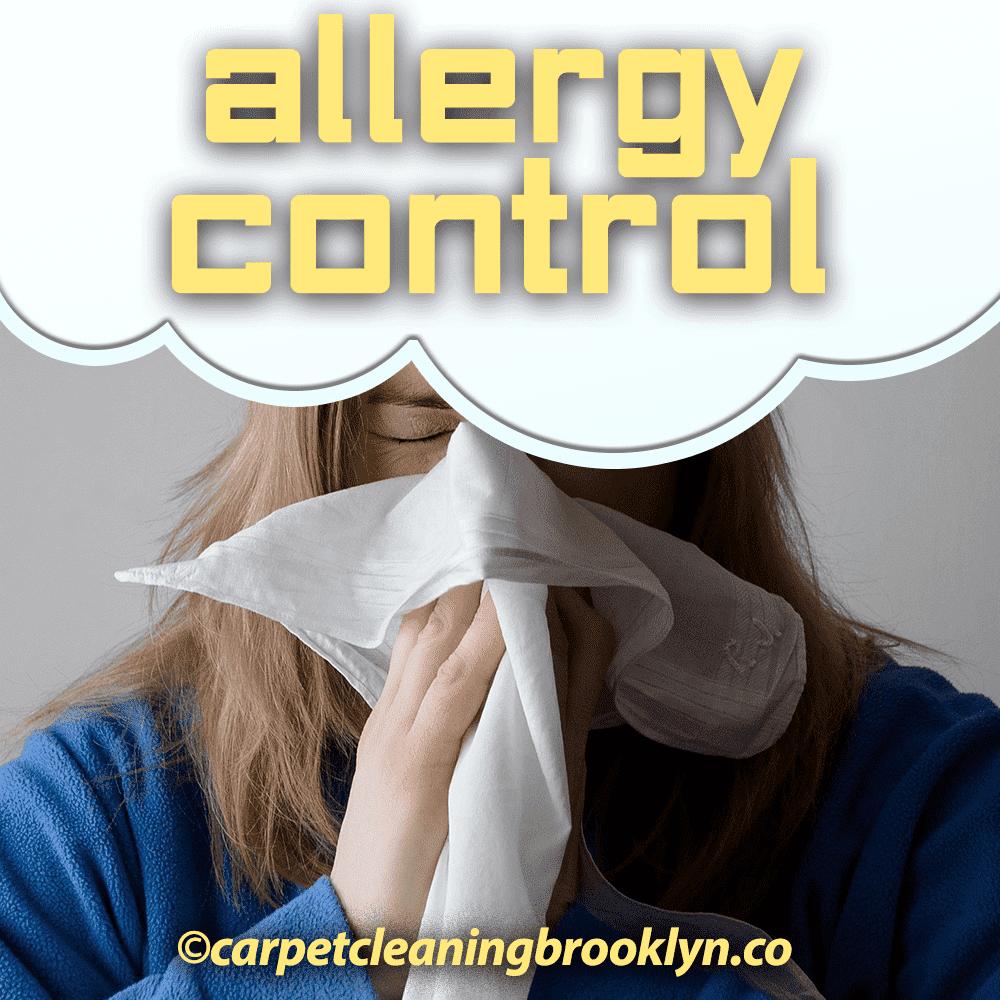 Allergy Control Treatment